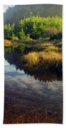 Reflections In The Pond Bath Towel