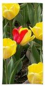 Renegade Tulip Hand Towel