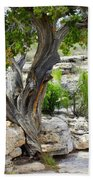 Resilient Tree Bath Towel