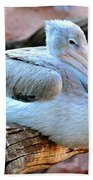 Resting Great White Pelican Bath Towel
