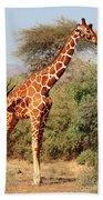 Reticulated Giraffe Bath Towel