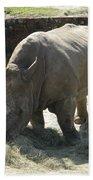 Rhino Eating Bath Towel