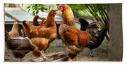 Rhode Island Red Chickens And Wooden Feeder  Bath Towel