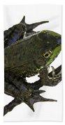 Ribbeting Frog In A Bucket Bath Towel