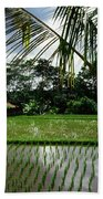 Rice Fields Bali Bath Towel