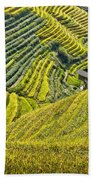 Rice Fields Terraces Bath Towel