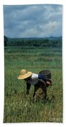 Rice Harvest In Southern China Bath Towel
