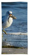 Ring-billed Gull With Its Catch Bath Towel