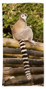 Ring-tailed Lemur Bath Towel
