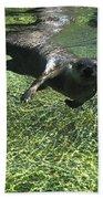 River Otter-7714 Bath Towel