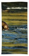 River Otter On A Rock Bath Towel