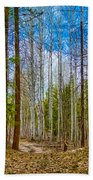 River Run Trail At Arrowleaf Bath Towel