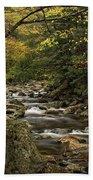 Roaring Branch Brook Bath Towel