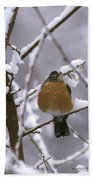 Robin In Snow Hand Towel