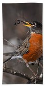 Robin Pictures 100 Bath Towel