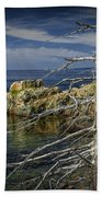 Rock Formations And Trees On The Shoreline In Acadia National Park Bath Towel
