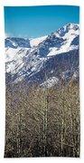 Rocky Mountain Woodland Bath Towel