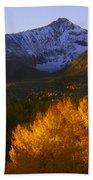 Rocky Mountains Bath Towel