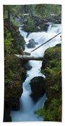 Rogue River Falls 1 Bath Towel