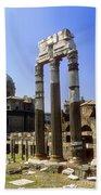 Romr Forum Columns Bath Towel