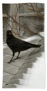 Roof Crow Bath Towel