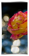 Rose In Dappled Afternoon Light Bath Towel
