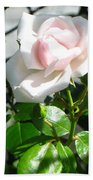 Rose Named Pearl Bath Towel