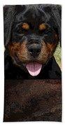 Rottweiler Bath Towel
