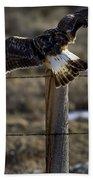 Rough-legged Hawk   #1865 Bath Towel