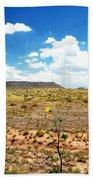 Route 66 Arizona Bath Towel
