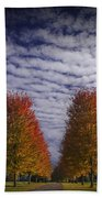 Rows Of Red Autumn Trees With Cirus Clouds Bath Towel