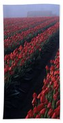 Rows Of Red Tulips Bath Towel