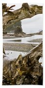 Ruby Beach Driftwood #3 Bath Towel