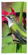 Ruby Throated Hummingbird Female Bath Towel