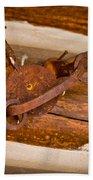 Rust Trapped On A Log - Old Trap - Casper Wyoming Bath Towel