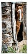 Rustic Horse Scene Bath Towel