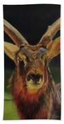Sable Antelope Bath Towel