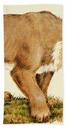 Sabretooth Cat Hand Towel