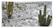 Saguaro Cacti After Rare Desert Bath Towel