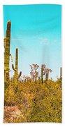 Saguaro Cactus In Organ Pipe Monument Bath Towel