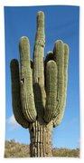 Saguaro Bath Towel