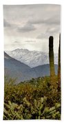 Saguaro Sentinels Bath Towel