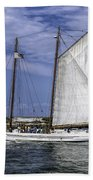 Sailboat In Cape May Channel Bath Towel