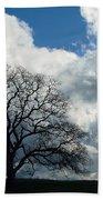 Same Tree Many Skies 13 Bath Towel