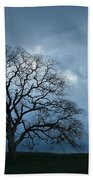 Same Tree Many Skies 14 Bath Towel