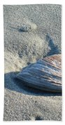 Sand And Seashell Bath Towel