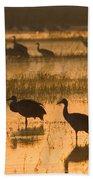 Sandhill Cranes Bosque Del Apache Nwr Bath Towel