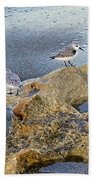 Sandpipers On Coral Beach Bath Towel