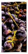 Sangiovese Grapes Bath Towel