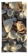 Sanibel Island Shells 3 Bath Towel